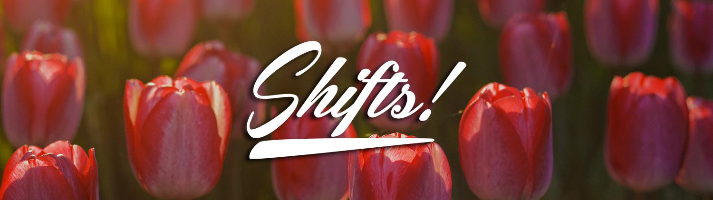 SHIFTS! Blog
