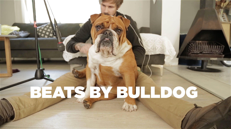 Questo ragazzo ha suonato il suo cane come se fosse una batteria